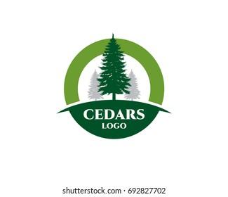 cedar plant wood forest logo