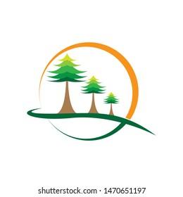 Cedar tree logo template vector icon design