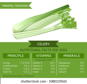 The celery health benefits. Vector illustration with useful nutritional facts. Essential vitamins and minerals in healthy food. Medical, healthcare and dietory concept.