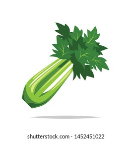 Celery vegetable vector isolated illustration