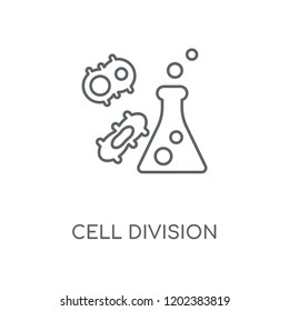 Cell division linear icon. Cell division concept stroke symbol design. Thin graphic elements vector illustration, outline pattern on a white background, eps 10.