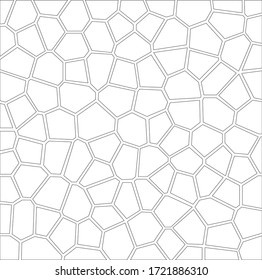 Cell Pattern in Black and White