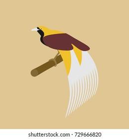 Cendrawasih Bird Origin Papua New Guinea Stock Vector Royalty Free 729666820