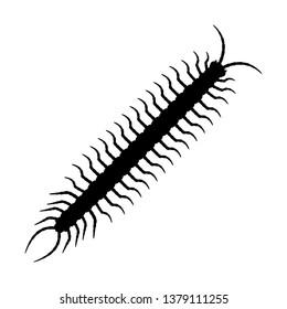 Centipede silhouette vector