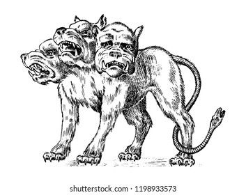 Cerberus three headed dog. Mythical Greek antique monster. Mythological animal. Fantastic creatures in the old vintage style. Engraved hand drawn old sketch.