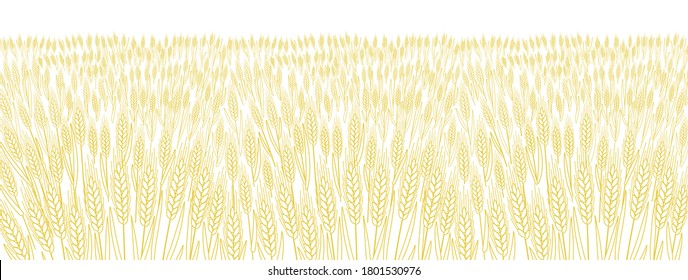 Cereal field. Leaves and ears of wheat wrapper. Agriculture straw. Horizontal banner background. Dry yellow grass meadow. Orange contour vector line. Bread wrapper.