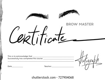 Certificate stylist on the eyebrows