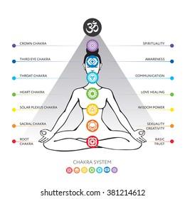Chakra system - Muladhara, Svadhisthana, Manipura, Anahata, Vishuddha, Ajna, Sahasrara, used in Yoga, Ayurveda, Hinduism. Asana padmasana - vector editable illustration.