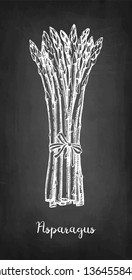 Chalk sketch of asparagus on blackboard background. Hand drawn vector illustration. Retro style.