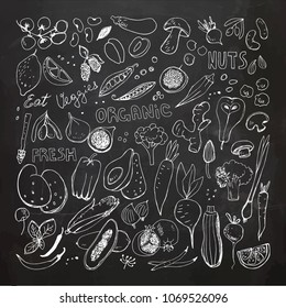 Chalkboard Organic Fruits and Vegetables Hand Drawn Doodles. Corn,Potato,Mushroom,Olives,Tomato,Garlic,Ginger,Eggplant,Peas,Broccoli,Fig,Pear,Berries,Apricot,Papaya,Garlic,Beet,Carrot,Citrus,Lemon,Ho