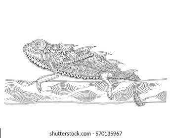 Chameleon with doodle pattern. Coloring page - zendala, design for relaxation for adults, vector illustration, isolated on a white background. Zen doodles.
