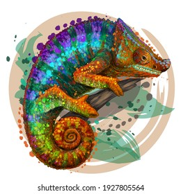 Chameleon. A graphic, multi-colored portrait of a lizard on a white background in a watercolor style. Digital vector graphics. Individual layers
