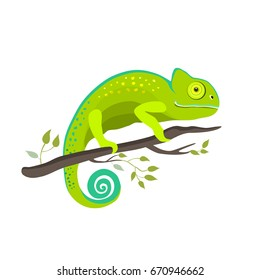 Chameleon icon. Cartoon illustration of walking chameleon vector for web