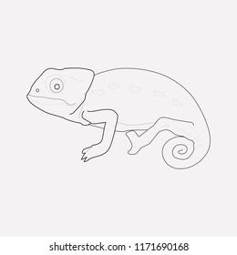 Chameleon icon line element. Vector illustration of chameleon icon line isolated on clean background for your web mobile app logo design.
