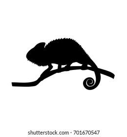 Chameleon lizard reptile black silhouette animal. Vector Illustrator.