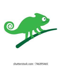 Chameleon lizard sitting on branch. vector illustration, on a white background