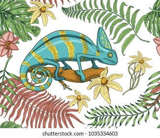 Chameleon Lizard, tropical flowers, seamless pattern. American green reptile or snake, herbivorous. vector illustration for book or pet store, zoo. engraved hand drawn in old sketch.