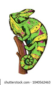 Chameleon sketch. Hand drawn illustration converted to vector