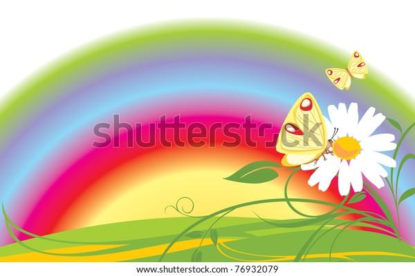 chamomile-butterflies-on-background-rain
