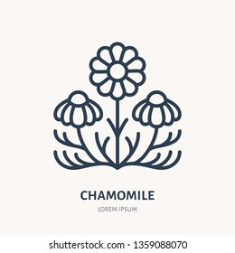 Chamomile flat line icon. Medicinal plant daisy chain vector illustration. Thin sign for herbal medicine, essential oil logo.