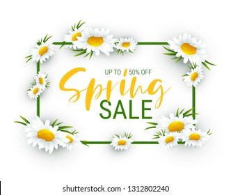 Chamomile frame with saler text.Flower frame. Floral border.Spring flowers frame composition. Sale background design