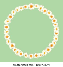 Chamomile pattern on green background. Daisy chain. Round frame for your text or photo. Vector illustration.