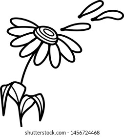 Chamomile with petals on inflorescence and cut off icon in outline style. Coloring template for modification and customizing  according to a specific task.
