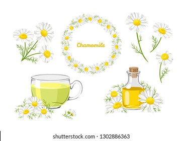Chamomile set. Bouquet, wreath, tea and chamomile oil isolated on white background. Vector illustration of white daisy flowers in cartoon flat style.