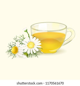 Chamomile. Chamomile tea. A useful therapeutic drink from flowers of chamomile medicinal. Hot aromatic fresh tea. Cup