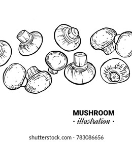 Champignon hand drawn vector illustration. Sketch mushroom  drawing isolated on white background. Organic vegetarian product. Great for menu, label, product packaging, recipe