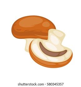 Champignon mushrooms whole and part of it isolated on white. Edible mushrooms that grow in forests or in gardens with short light stem and round brown hat. Ripe mushroom vector illustration.
