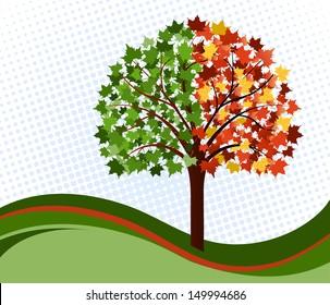 Change of seasons tree