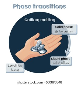 Changes of states. Part 6 of 6. Gallium melting. Phase transition from solid to liquid state. Educational infographics. Cartoon vector illustration in flat style.