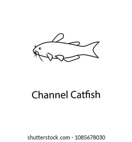 channel catfish icon. Element of marine life for mobile concept and web apps. Thin line channel catfish icon can be used for web and mobile. Premium icon on white background