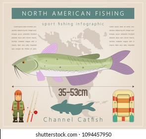Channel Catfish. North American Fishing Infographic Set. Freshwater Fish. Vector Illustration.