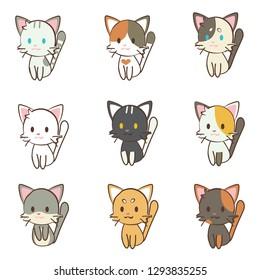 character cartoon cat set