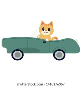 The character cute cat driving a green sport car. The cat driving a green car on the white background. cat smiling and   it look happy. cute cat in flat vector style.
