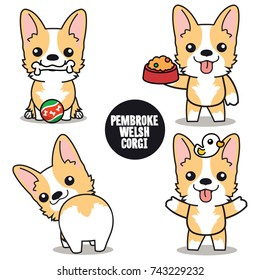 Character design set of Cute Pembroke Welsh Corgi vector , isolated on white background , jpg included Clipping Path