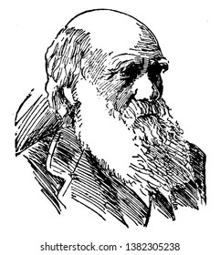 Charles Robert Darwin, 1809-1882, he was an English naturalist, geologist and biologist, famous for his contributions to the science of evolution, vintage line drawing or engraving illustration