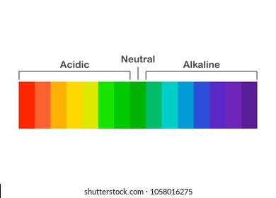 Chart ph alkaline and acidic scale