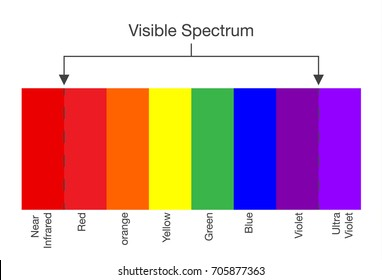Chart of Visible spectrum of light. Illustration about Human vision.