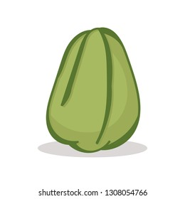 chayote vector stands in white background