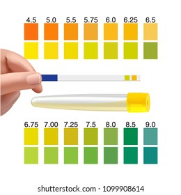 Check a urine sample out of the tube. Urine PH test strip in doctor's hand
