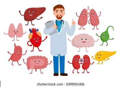 Cheerful Doctor and healthy organs cartoon characters isolated on white background. Medical checkup concept illustration in flat design. Funny brain, strong heart, liver thyroid, stomach lungs vector
