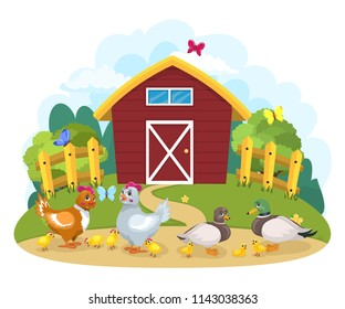 Cheerful painted illustration, domestic birds with toddlers on the farm. Chickens, chickens, duck and drake with ducklings.