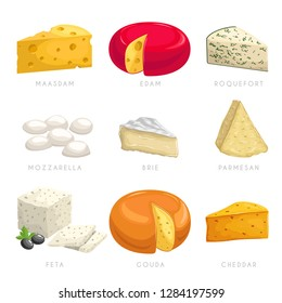 Cheese different types. Maasdam, edam, roquefort, mozzarella, brie, parmesan, feta, gouda, cheddar. Dairy products icons. Vector illustration collection.