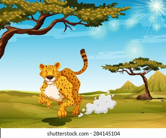 Cheetah running in the field at daytime