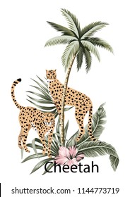 Cheetah, tropical palm tree, hibiscus and palm leaves illustration. Jungle composition.