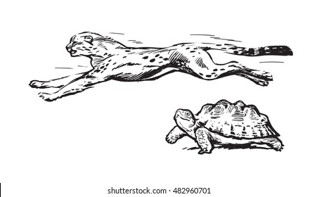 Cheetah and turtle. Fast and slow concept. Sketch style hand drawn vector illustration isolated on white background.