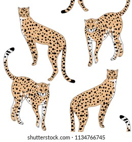 Cheetah wild animal seamless pattern. Exotic wallpaper.